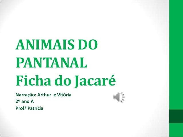 ANIMAIS DO PANTANAL Ficha do Jacaré Narração: Arthur e Vitória 2º ano A Profª Patrícia