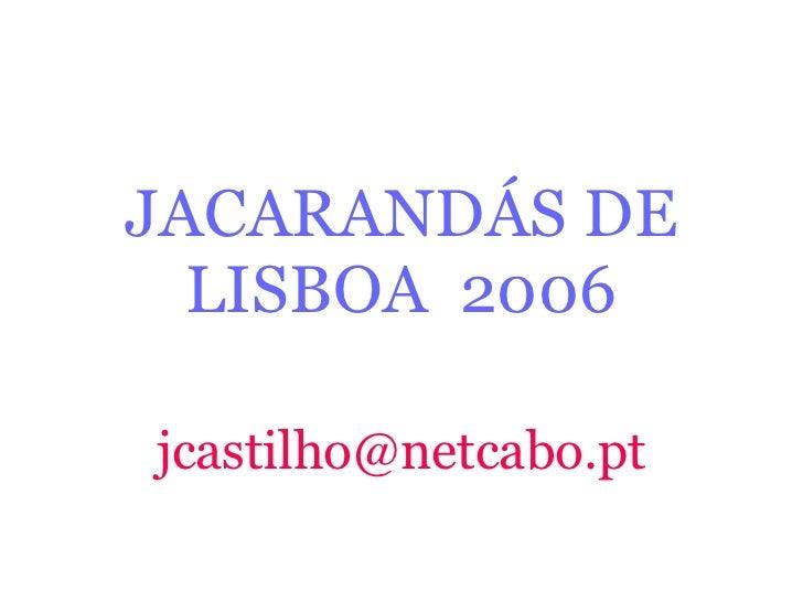 JACARANDÁS DE LISBOA  2006 [email_address]