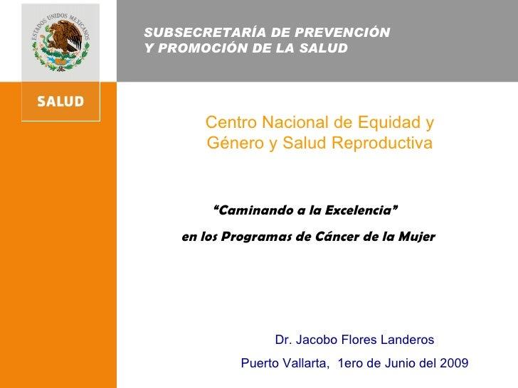 """SUBSECRETARÍA DE PREVENCIÓN  Y PROMOCIÓN DE LA SALUD Centro Nacional de Equidad y Género y Salud Reproductiva """" Caminando ..."""
