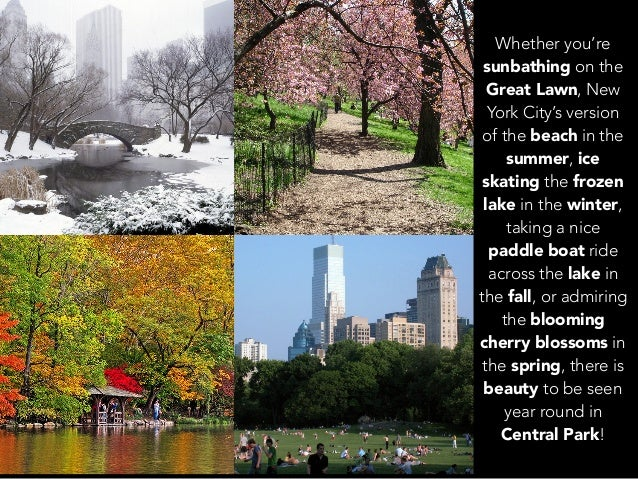 Jack D Ryger: A Journey Through The Beautiful Seasons Of Central Park Slide 2