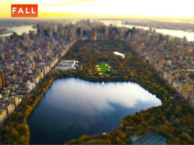 Jack D Ryger: A Journey Through The Beautiful Seasons Of Central Park Slide 3