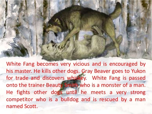 a description of a short summary of the novel white fang by jack london White fang conflict/short summary by jack london study guide - free online notes/analysis/book summary/online/chapter notes/download.