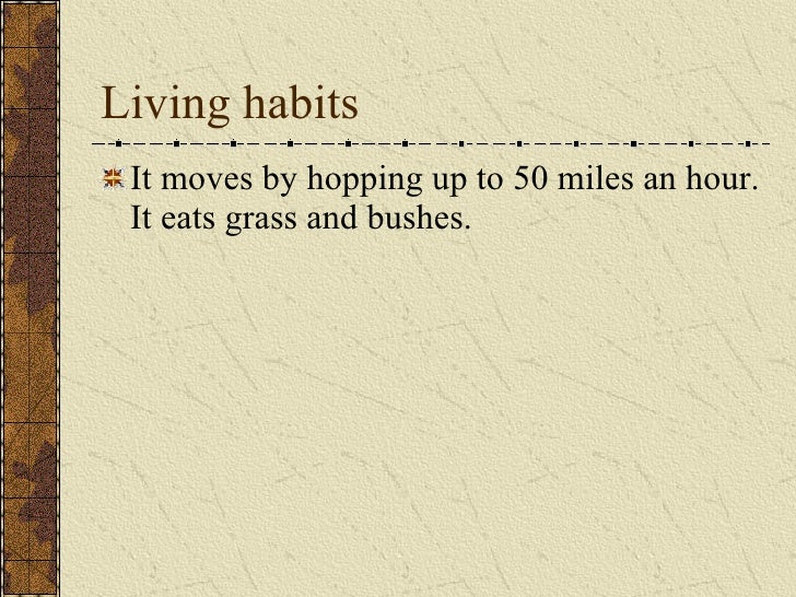 Living habits <ul><li>It moves by hopping up to 50 miles an hour. It eats grass and bushes.  </li></ul>