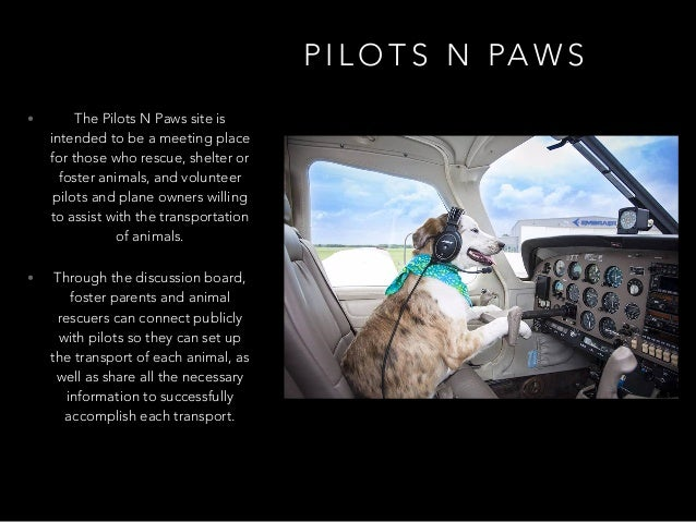 P I L O T S N PA W S • The Pilots N Paws site is intended to be a meeting place for those who rescue, shelter or foster an...
