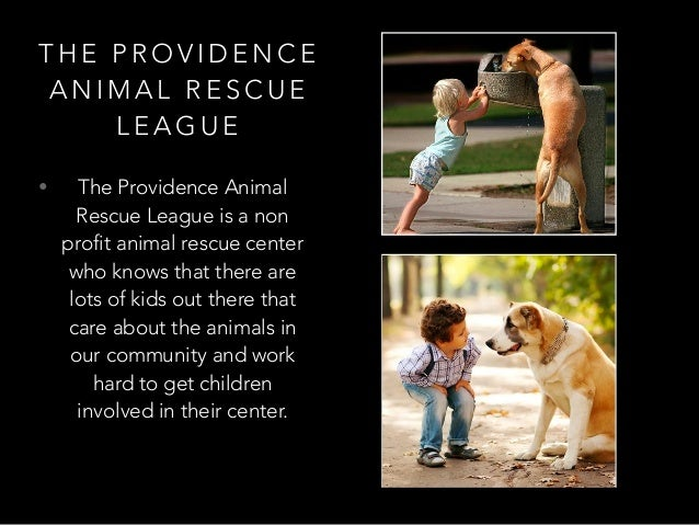 T H E P R O V I D E N C E A N I M A L R E S C U E L E A G U E • The Providence Animal Rescue League is a non profit animal...