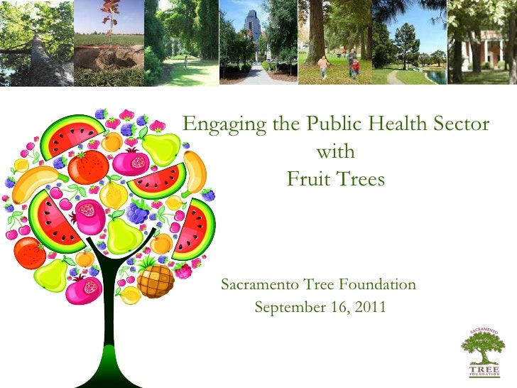 Sacramento Tree Foundation  September 16, 2011 Engaging the Public Health Sector with Fruit Trees