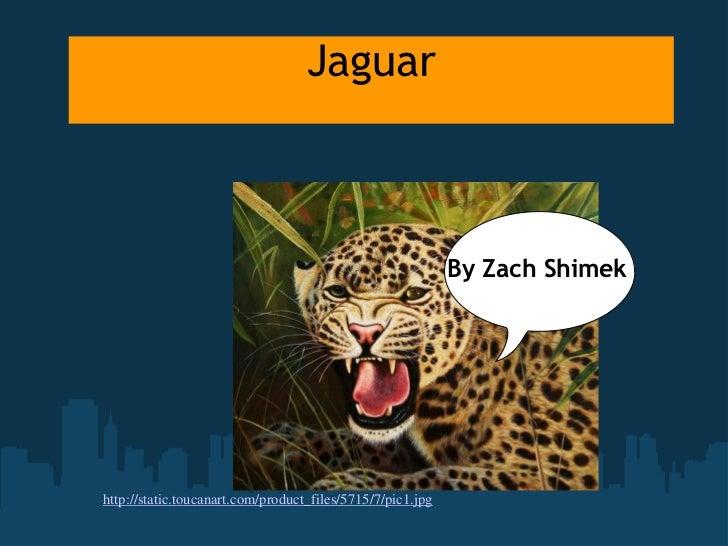 Jaguar<br />By Zach Shimek<br />http://static.toucanart.com/product_files/5715/7/pic1.jpg<br />