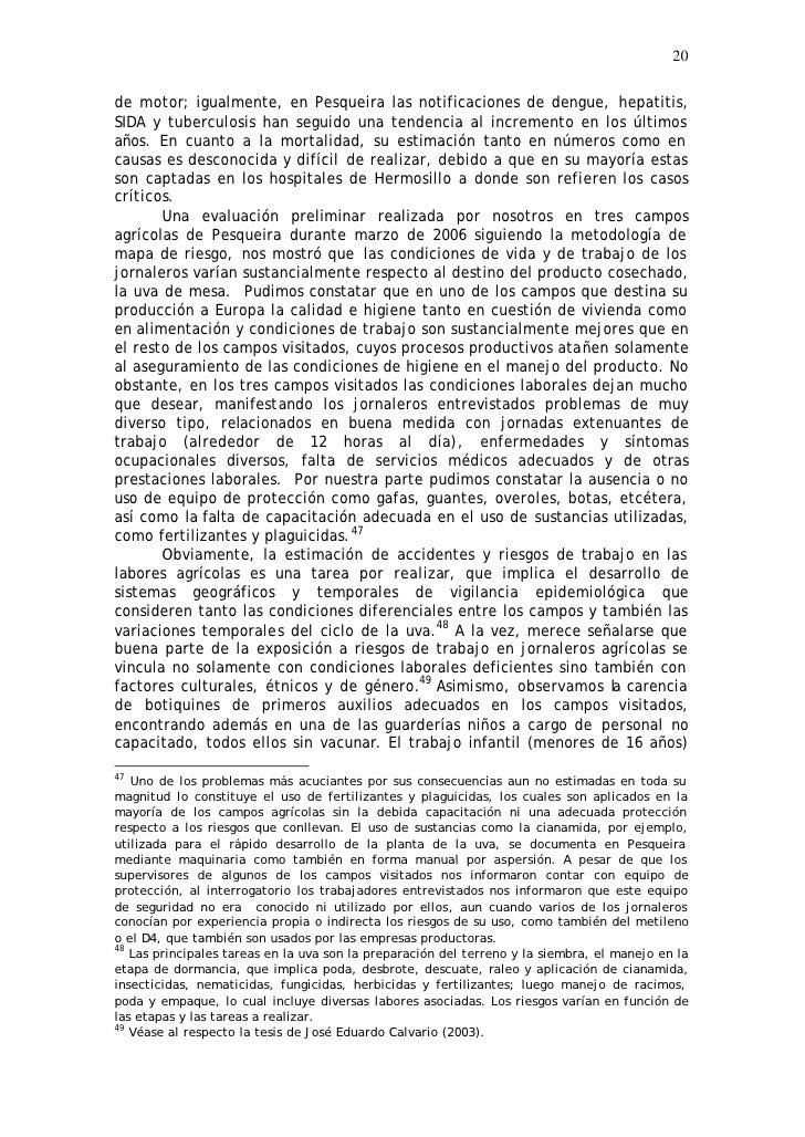 20  de motor; igualmente, en Pesqueira las notificaciones de dengue, hepatitis, SIDA y tuberculosis han seguido una tenden...