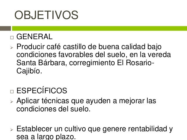 Proyecto de caf for Cafeteria escolar proyecto