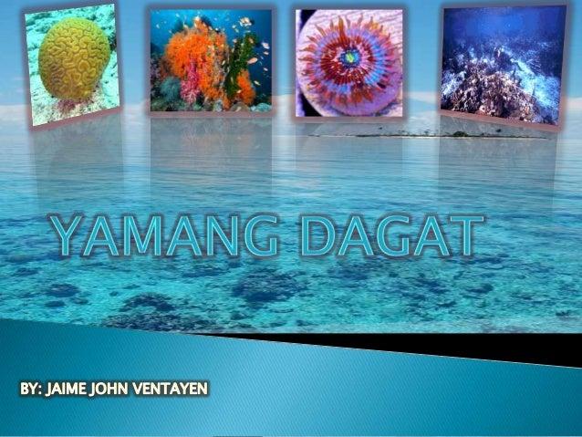 Ang Bansang Pinagpala