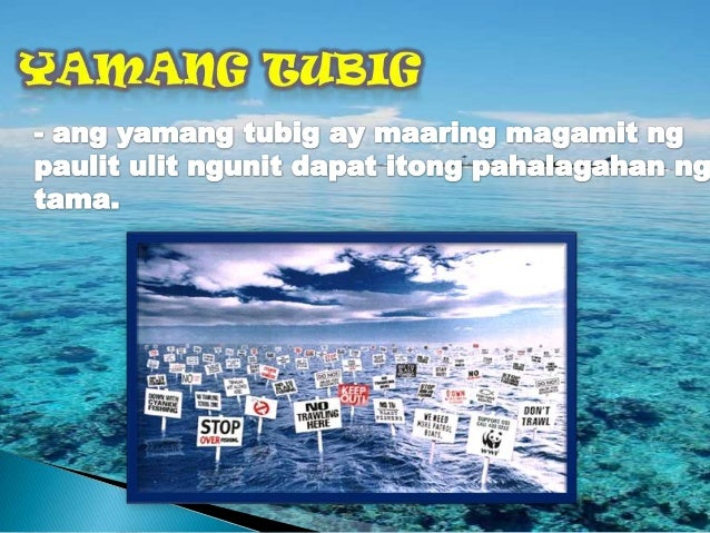 ilog pasig slogan Pasyal ilog pasig judging and awarding  with the slogan their future is our future - sustainable development for wildlife & people, the cms cop placed.