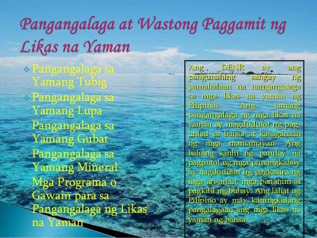ano ang yamang gubat Ang yamang gubat ay ang mga kahoy at ang mga suliraninang pag putol sa mga kahoy at pagsusunog nito, ginagawa itong troso.