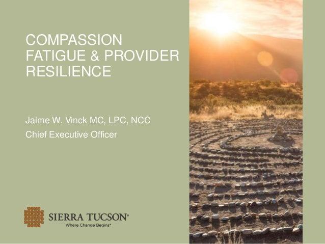 COMPASSION FATIGUE & PROVIDER RESILIENCE Jaime W. Vinck MC, LPC, NCC Chief Executive Officer