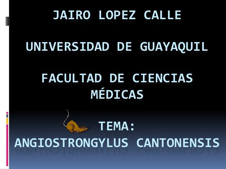 JAIRO LOPEZ CALLE UNIVERSIDAD DE GUAYAQUIL   FACULTAD DE CIENCIAS          MÉDICAS           TEMA:ANGIOSTRONGYLUS CANTONEN...