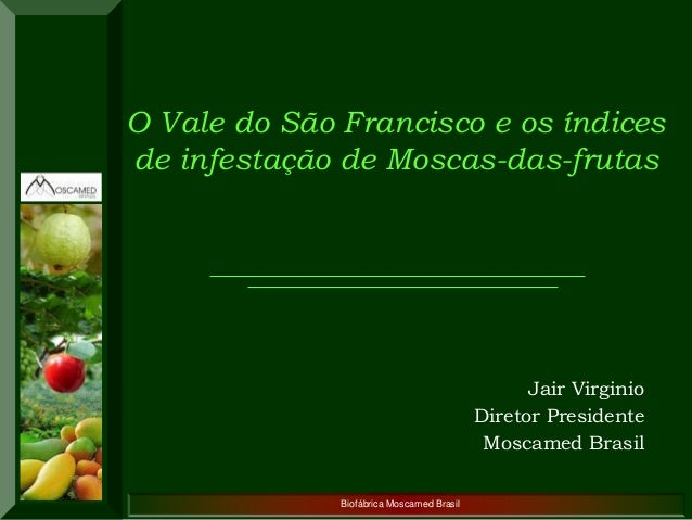 Biofábrica Moscamed Brasil  Jair Virginio  Diretor Presidente  Moscamed Brasil  O Vale do São Francisco e os índices de in...