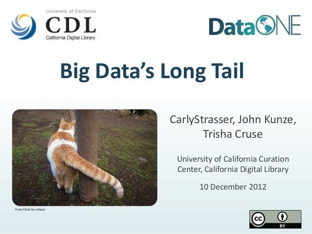 Big Data's Long Tail                                   CarlyStrasser, John Kunze,                                         ...