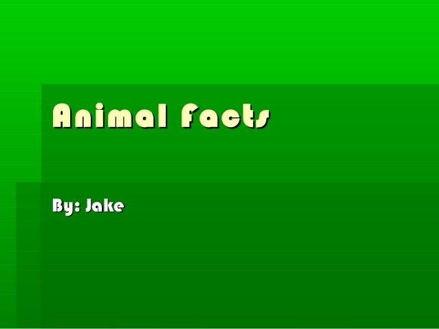 Animal FactsBy: Jake