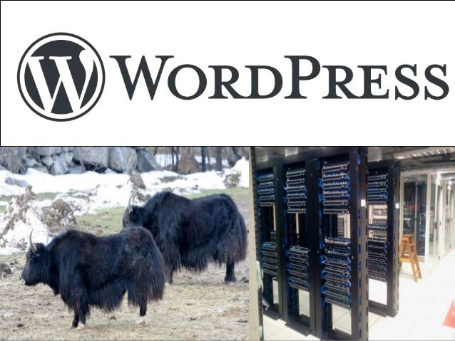 Jaki hosting pod Wordpressa? Niedoszły Bibliotekarz przedstawia: http://am.vj.pl Zima 2019