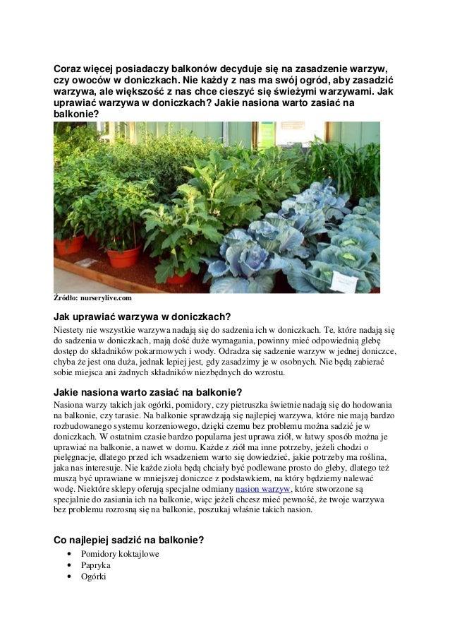 Jak Uprawiać Warzywa W Doniczkach