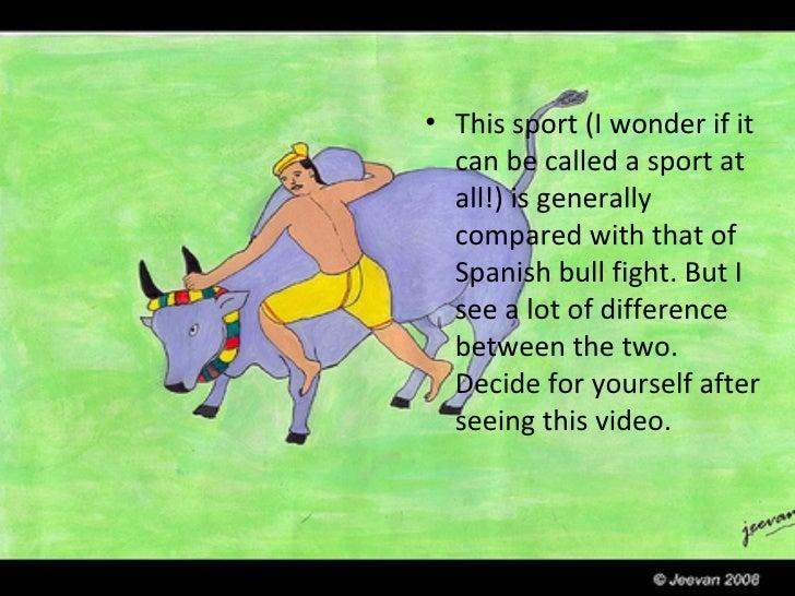 Jallikattu Bullfight Of South India Old