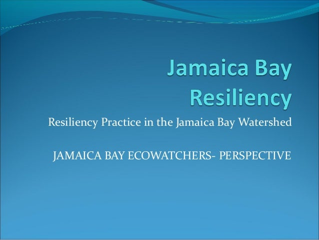 Resiliency Practice in the Jamaica Bay Watershed JAMAICA BAY ECOWATCHERS- PERSPECTIVE