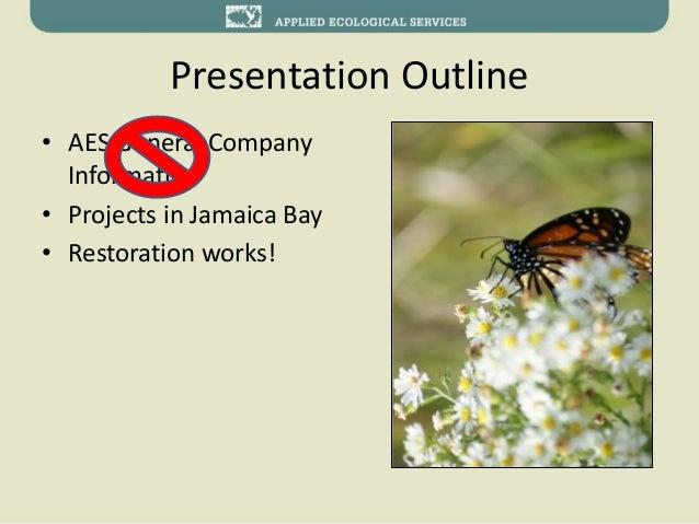 Jamaica bay task force -Ecological Restoration around the bay Slide 2