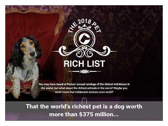 That the world's richest pet is a dog worth more than $375 million...