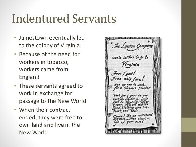 Demographics and Changes in Family Structure timeline ...  |Indentured Servants From England