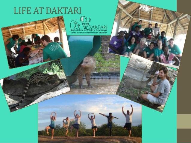 LIFE AT DAKTARI