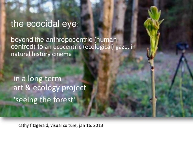 the ecocidal eye:beyond the anthropocentric (human-centred) to an ecocentric (ecological) gaze, innatural history cinemain...