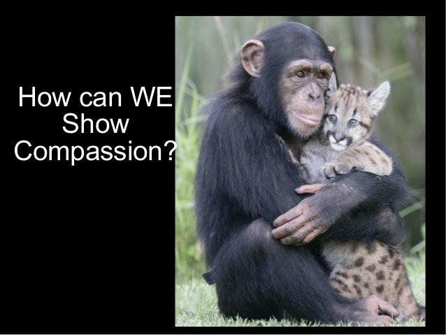 How can WE Show Compassion?