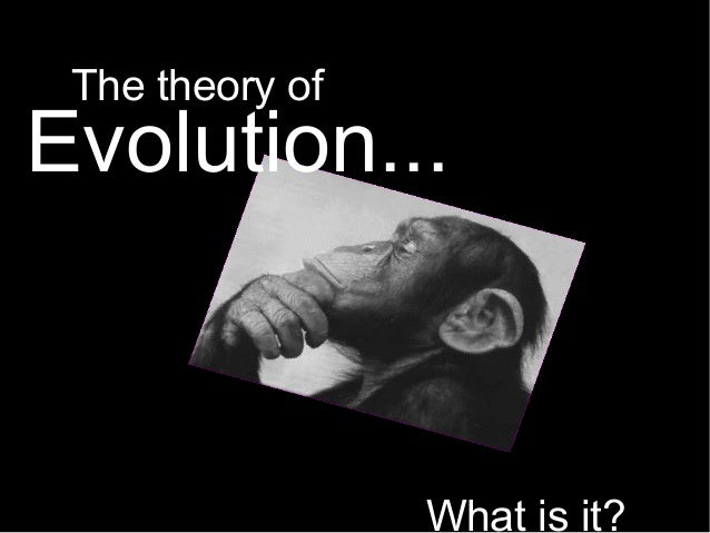 Evolution... What is it? The theory of