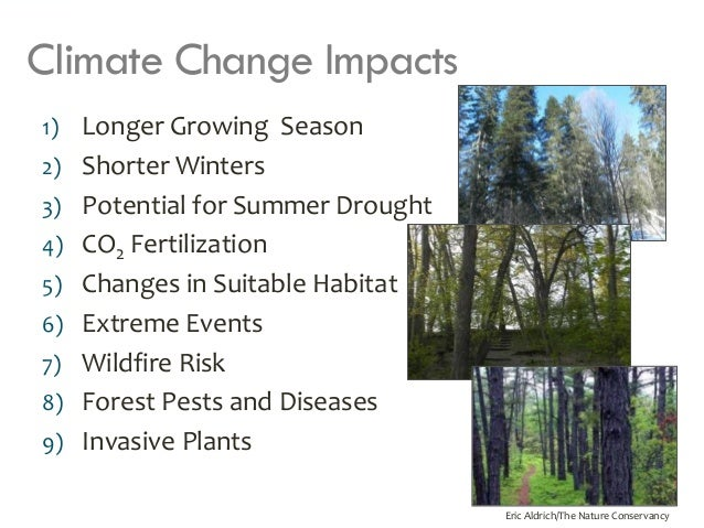 climate change affect plants As climate change alters temperature and weather patterns, it will also impact plant and animal life scientists expect the number and range of species, which define biodiversity, will decline greatly as temperatures continue to rise.