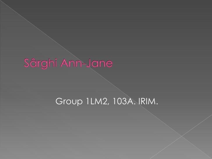 Group 1LM2, 103A. IRIM.