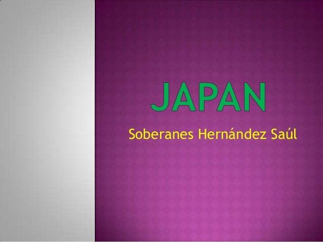 Soberanes Hernández Saúl