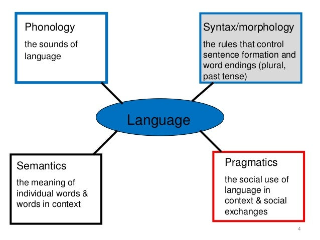 the relationship between morphology syntax and semantics