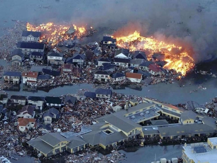 thesis about tsunami in japan