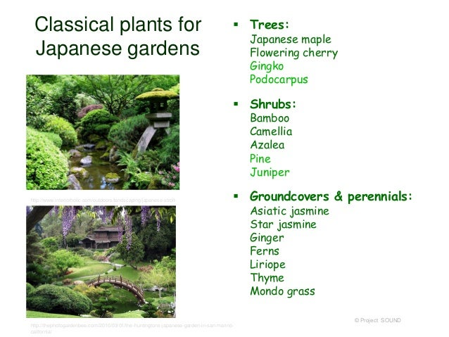 ... Garden In Japan © Project SOUND; 25. Classical Plants ...