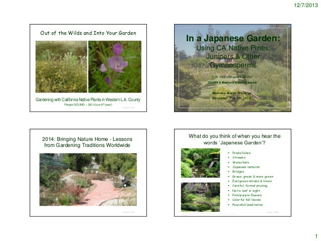 12/7/2013  Out of the Wilds and Into Your Garden  In a Japanese Garden: Using CA Native Pines, Junipers & Other Gymnosperm...