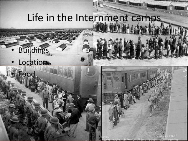 internment camps essay Japanese-american internment the university of utah provides these excellent photo galleries of life, work, and housing in the internment camps of tule lake.