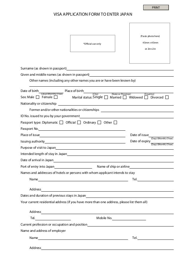 Japan Visa Application Form