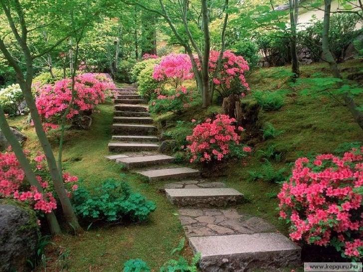 Japon  3 Slide 17