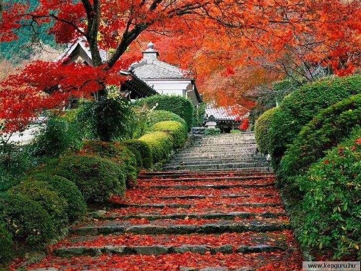 Japon  3 Slide 22