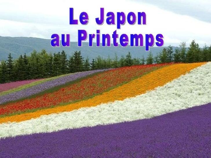 Le Japon  au Printemps