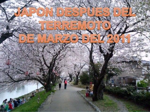 El 11 de marzo un terremoto de 9 grados y eldevastador tsunami que se produjo comoconsecuencia dejaron al menos 13.843muer...