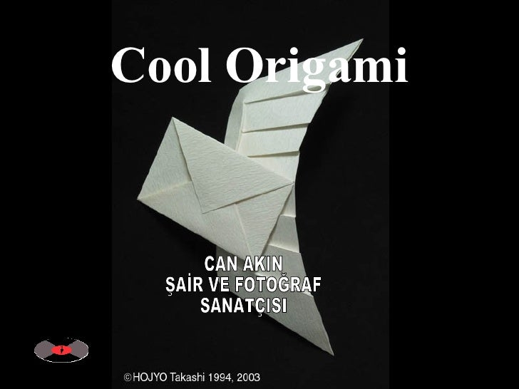 Cool Origami CAN AKIN ŞAİR VE FOTOĞRAF SANATÇISI