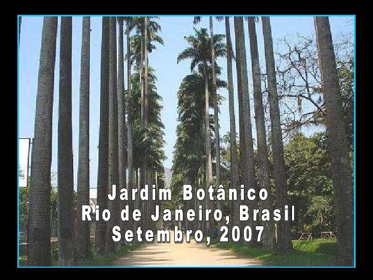 Jardim Botânico Rio de Janeiro, Brasil Setembro, 2007