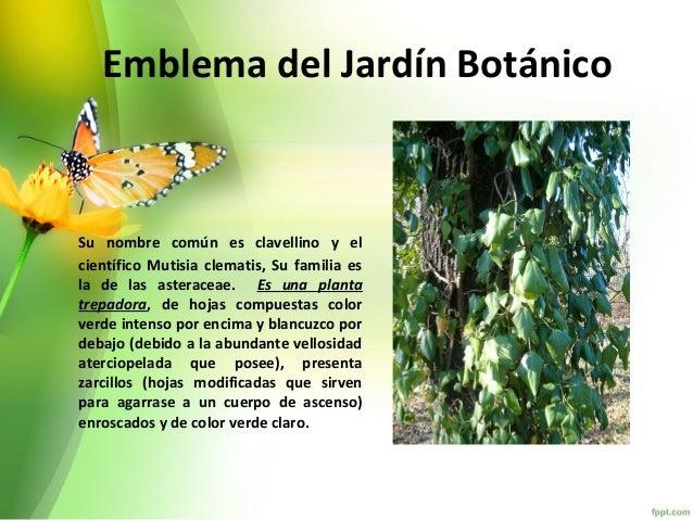 Jardin botanico for Caracteristicas de un jardin botanico