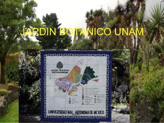 Jardin botanico unam for Caracteristicas de un jardin botanico