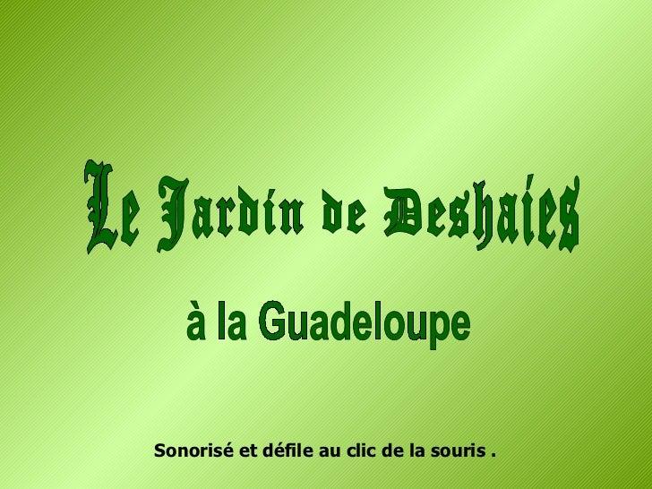 Le Jardin de Deshaies à la Guadeloupe Sonorisé et défile au clic de la souris .